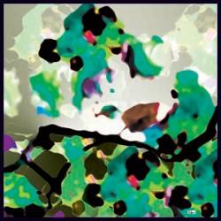 Yeşil Siyah Krem Tonları Modern Karışık Desenli Eşarp