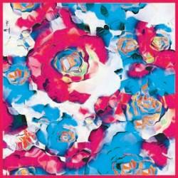Gül Desenli Açık Mavi Pembe Tonları Eşarp